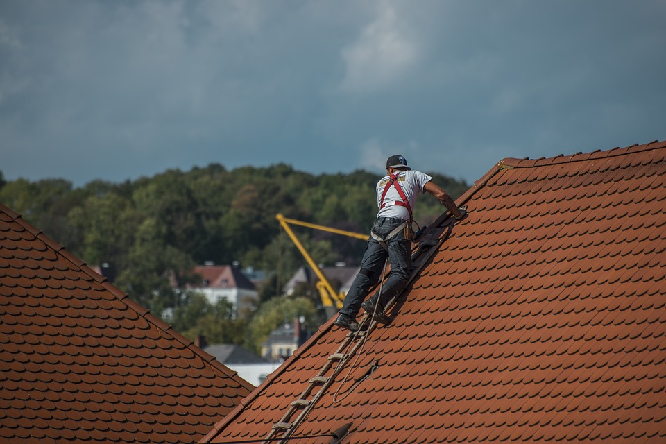 Roof Cleaning: 3 Reasons Why It Is Absolutely Necessary